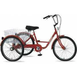 Orient: Tricycle 24''